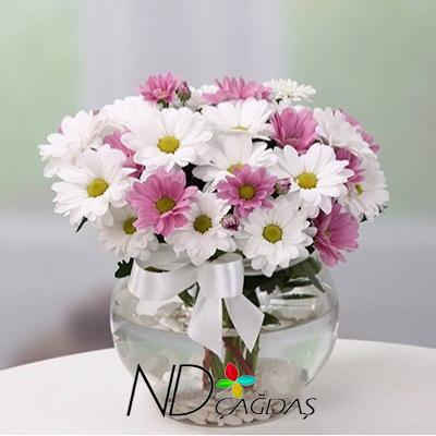 çiçek çiçekçi Bucak çiçek Burdurcicek Burdur çiçek Bucak çiçekçi